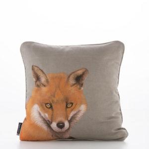 FOX AMBERGLOW